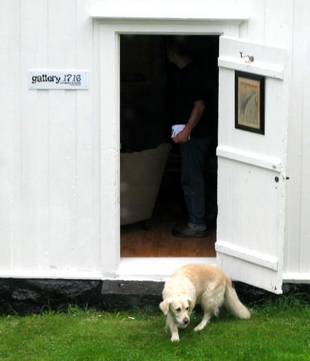 nektethund